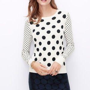 Ann Taylor Polka Dot Sweater Zipper Detail